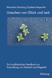 dkv_buecher_500-002_Ursachen